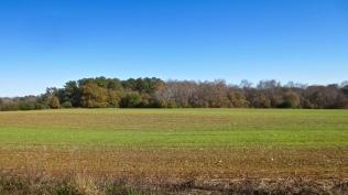 Winter fields on Spring Valley Rd.